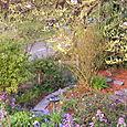Pat_Garden_in_Seattle_001