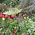 Pat_Garden_in_Seattle_012