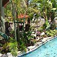 Yard & Pool-14