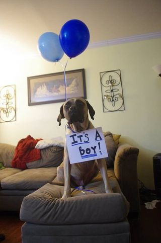 Lemmy balloons