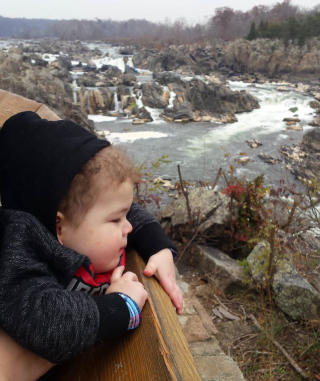 Nolan Great Falls